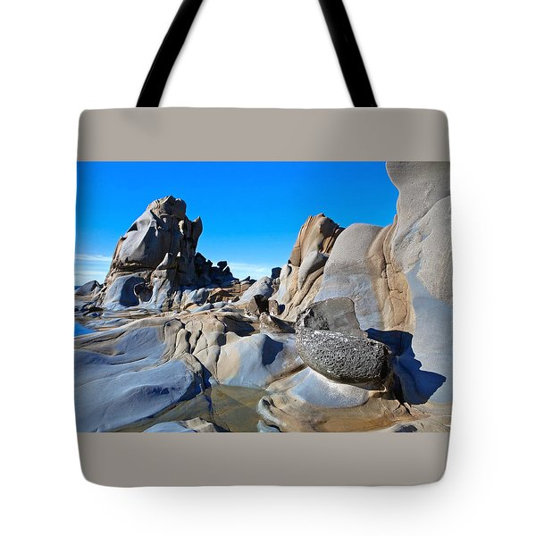 Stump Beach Tote Bag by Daniel Furon