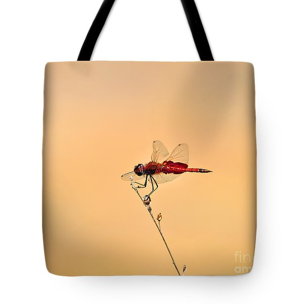 Stunning Saddlebags Tote Bag by Al Powell Photography USA