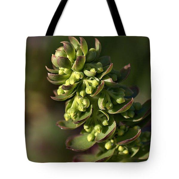Succulent Tote Bag by Joy Watson