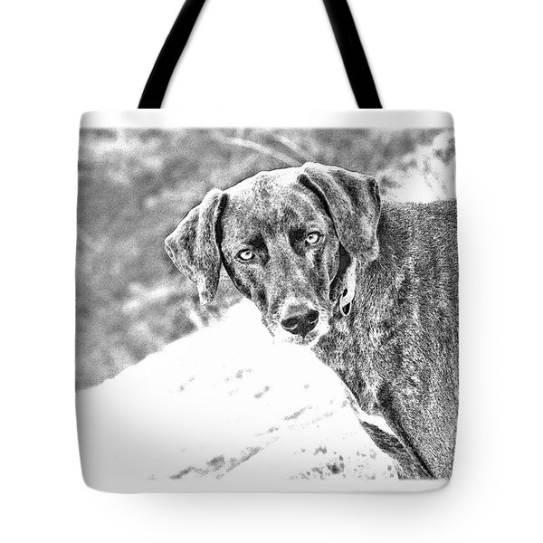 Such a Pretty Girl Tote Bag by Peggy Collins