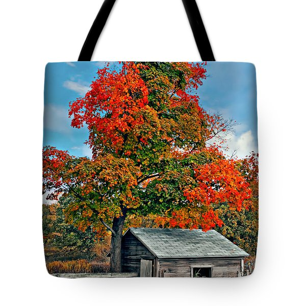 Sugar Shack Tote Bag by Steve Harrington