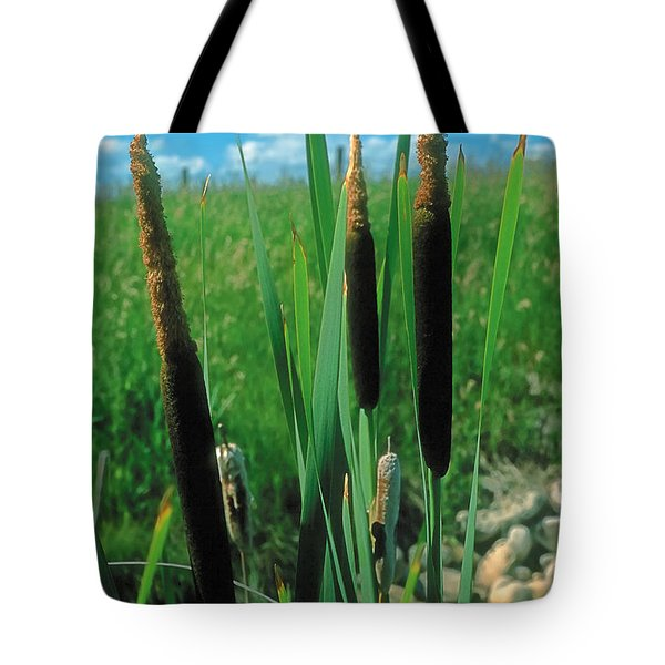 Summer 2 Tote Bag by Terry Reynoldson