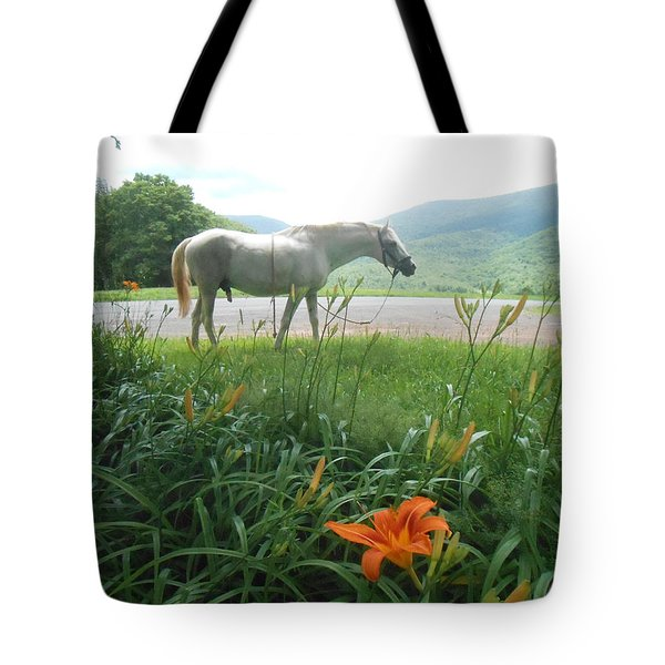 Summer Day Memories with The Paso Fino Stallion Tote Bag by Patricia Keller
