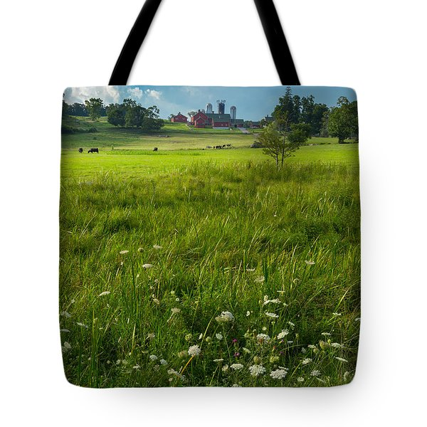 Summer Days Tote Bag by Bill  Wakeley