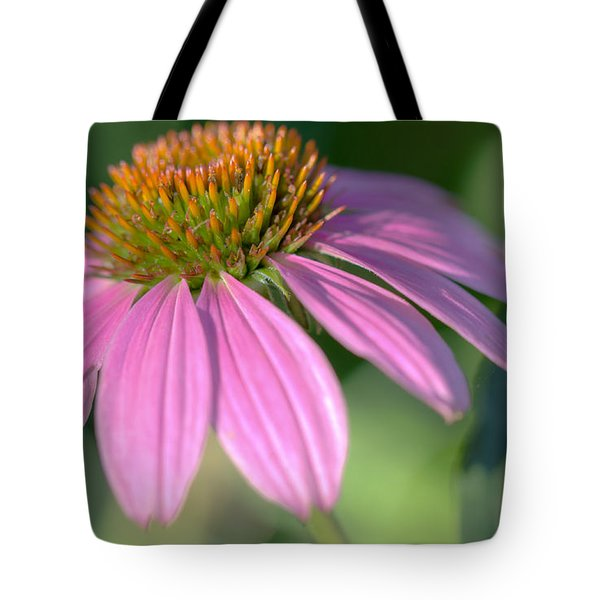 Summer Days End Tote Bag by Heidi Smith