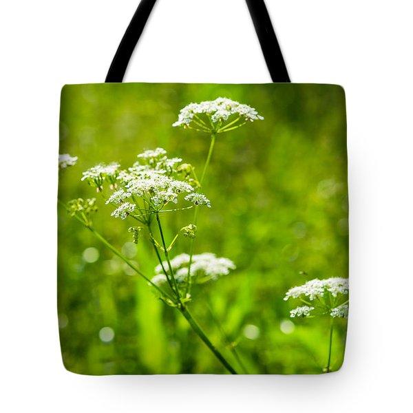 Summer Heat - Featured 3 Tote Bag by Alexander Senin