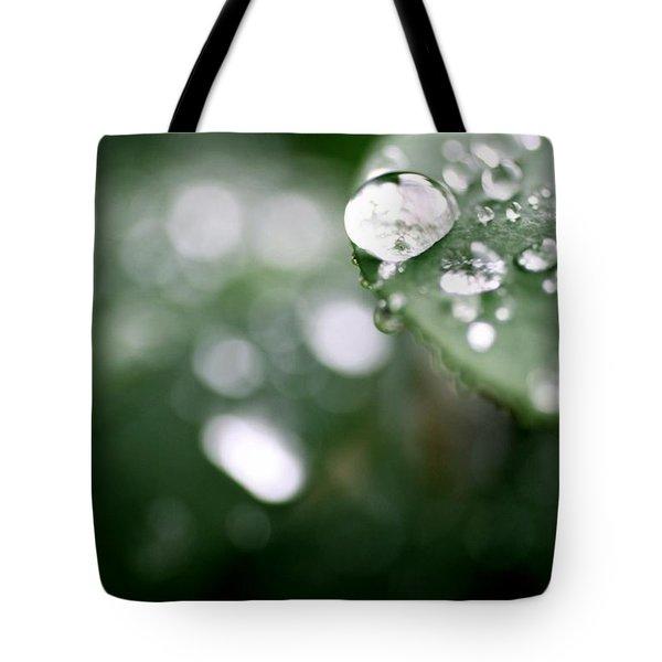 Summer Rain Tote Bag by AR Annahita