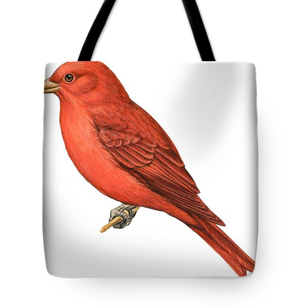 Summer Tanager  Tote Bag by Anonymous