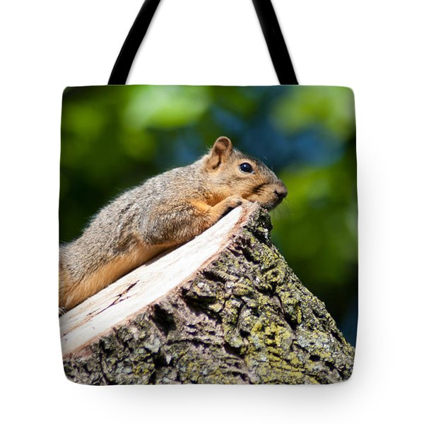 Sun Basking  Tote Bag by Optical Playground By MP Ray