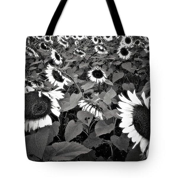 Sun Fam Tote Bag by Robert McCubbin