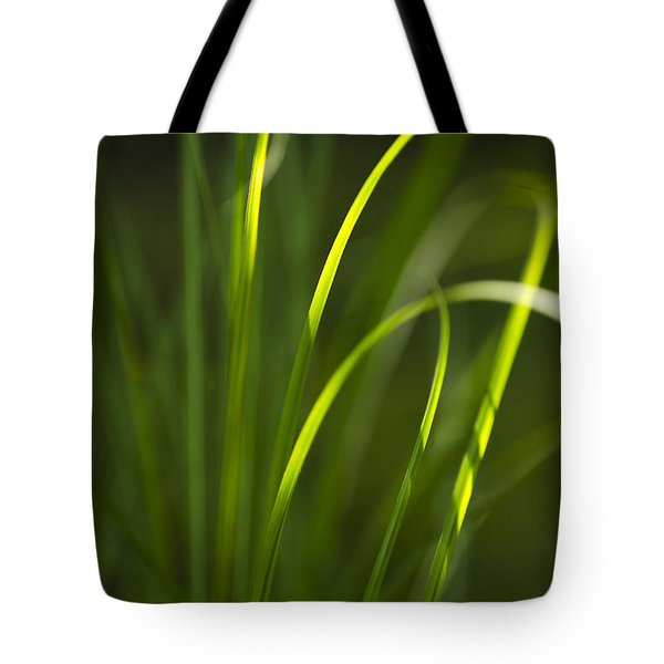 Sun-kissed Grass Tote Bag by Christina Rollo