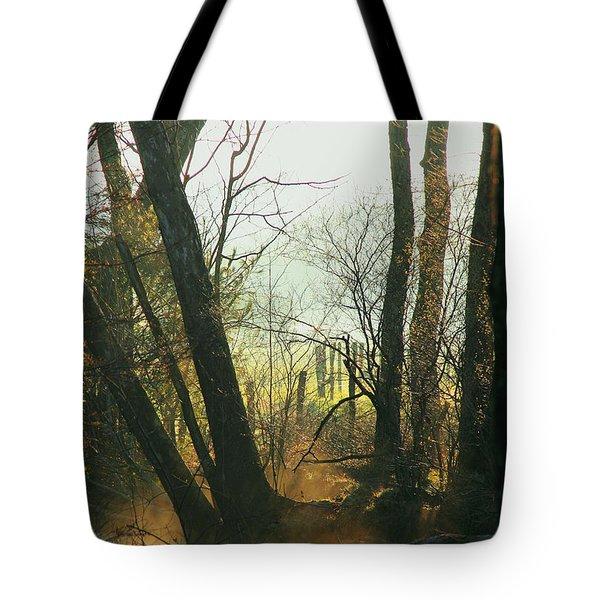 Sun Splash Tote Bag by Douglas Stucky
