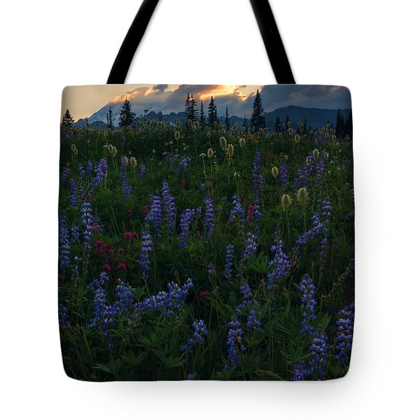 Sunbeams Over Rainier Tote Bag by Mike  Dawson