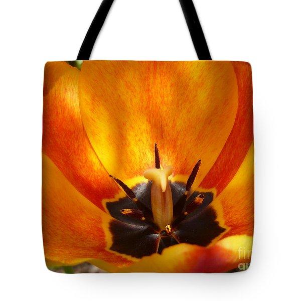Sunburst Orange  Peach Blossom Tote Bag by Lingfai Leung