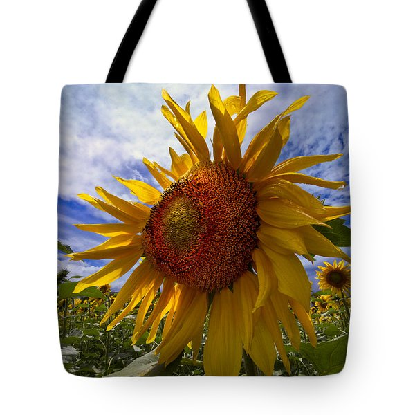 Sunflower Blue Tote Bag by Debra and Dave Vanderlaan