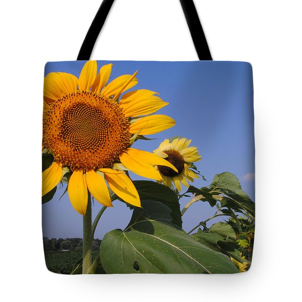 Sunflower Blues Tote Bag by Frozen in Time Fine Art Photography