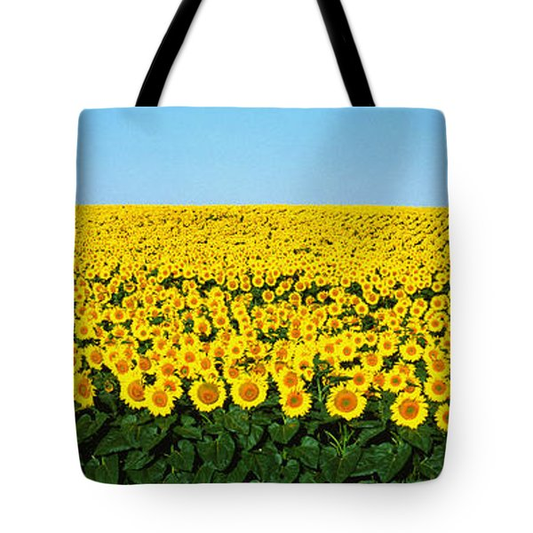 Sunflower Field, North Dakota, Usa Tote Bag by Panoramic Images