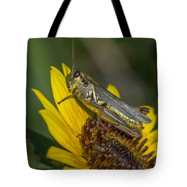 Sunflower Love Tote Bag by Ernie Echols