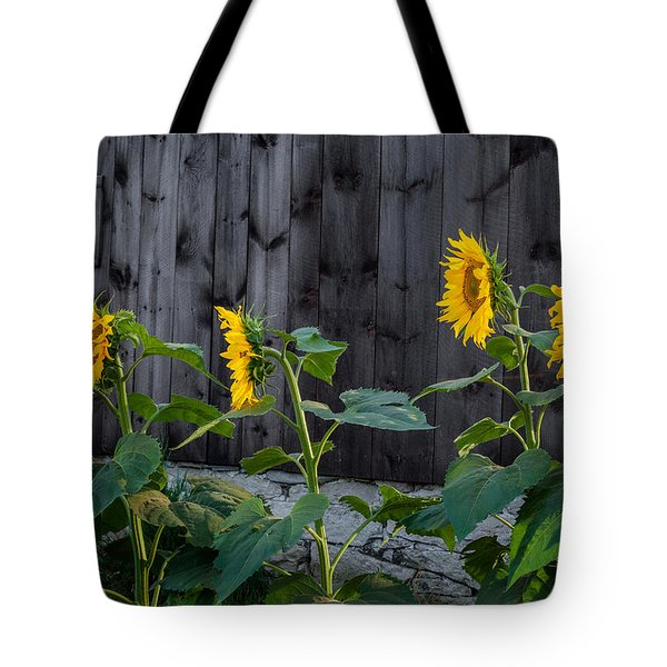 Sunflower Quartet Tote Bag by Bill  Wakeley