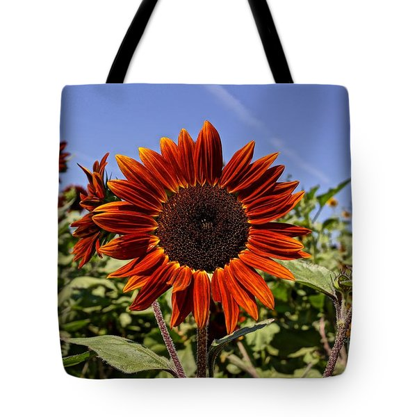 Sunflower Sky Tote Bag by Kerri Mortenson