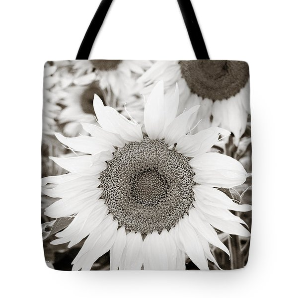 Sunflowers in Back and White Tote Bag by Marilyn Hunt