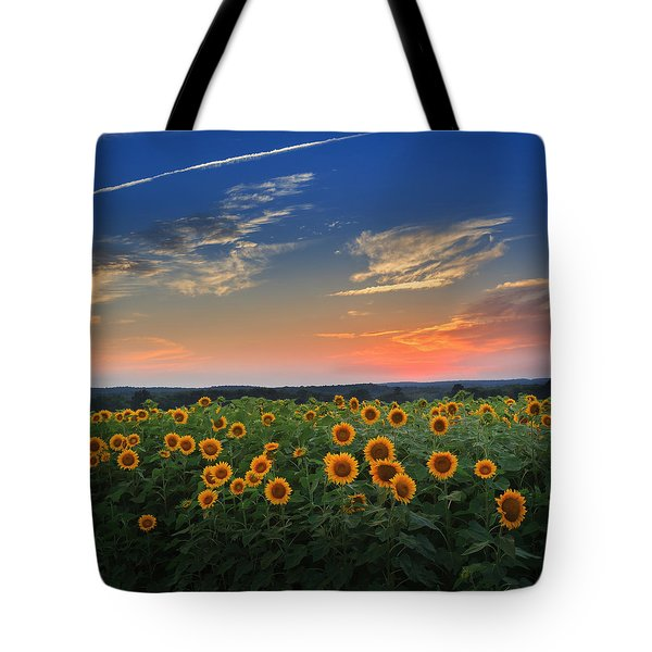 Sunflowers in the evening Tote Bag by Bill  Wakeley