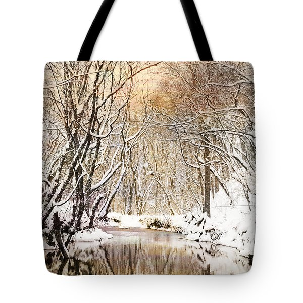 Sunkissed Winter Creek Tote Bag by Jai Johnson