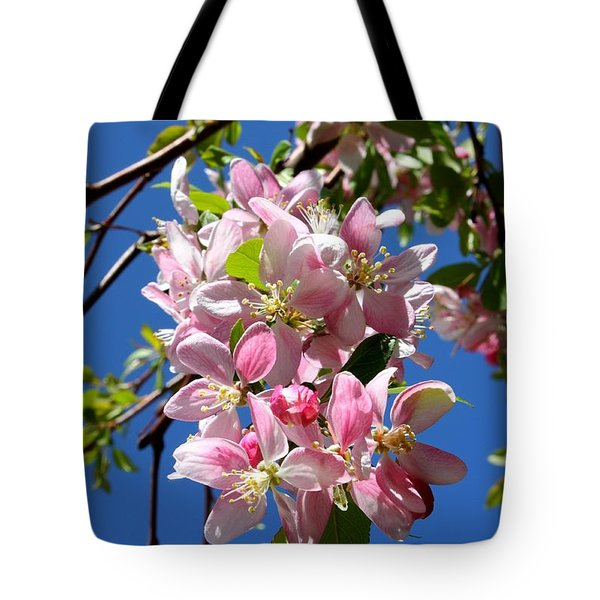 Sunlight On Spring Blossoms Tote Bag by Carol Groenen