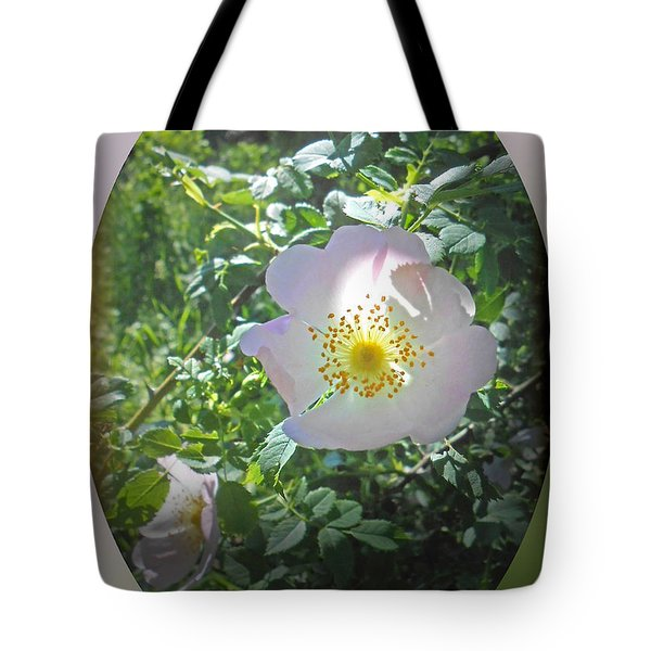 Sunlight On The Wild Pink Rose Tote Bag by Patricia Keller
