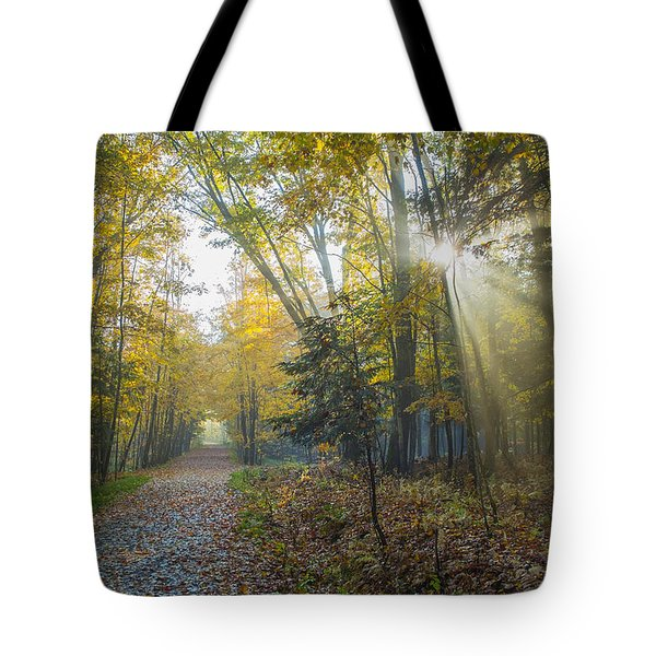 Sunlight Streaming Through The Trees Tote Bag by Jacques Laurent