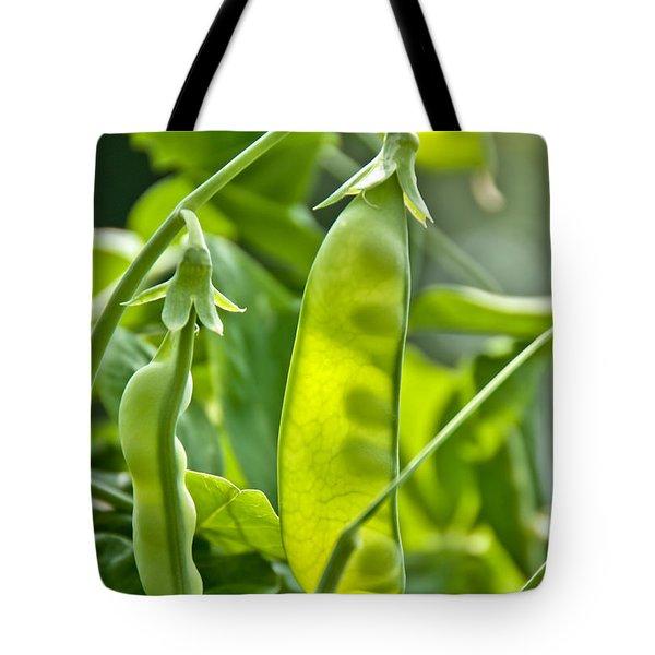 Sunlit Bounty Tote Bag by Cheryl Baxter