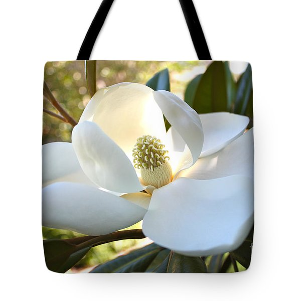 Sunlit Southern Magnolia Tote Bag by Carol Groenen
