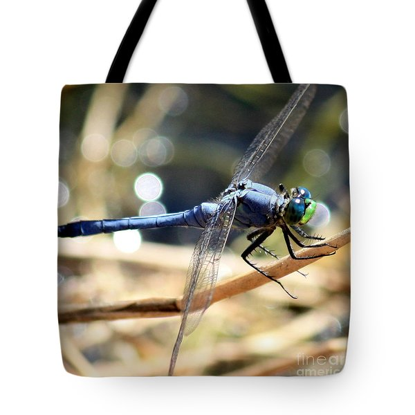Sunning Blue Dragonfly Square Tote Bag by Carol Groenen