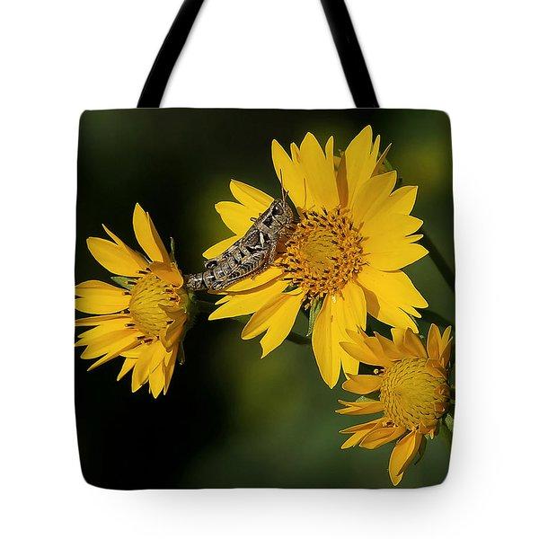 Sunny Hopper Tote Bag by Ernie Echols