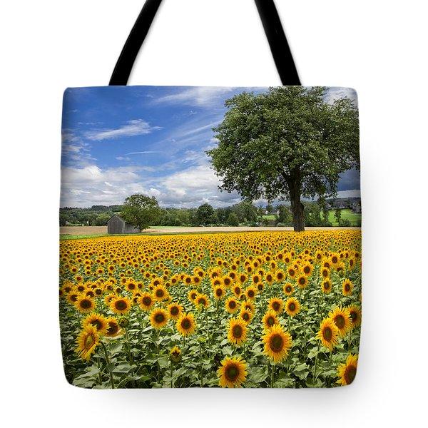 Sunny Sunflowers Tote Bag by Debra and Dave Vanderlaan