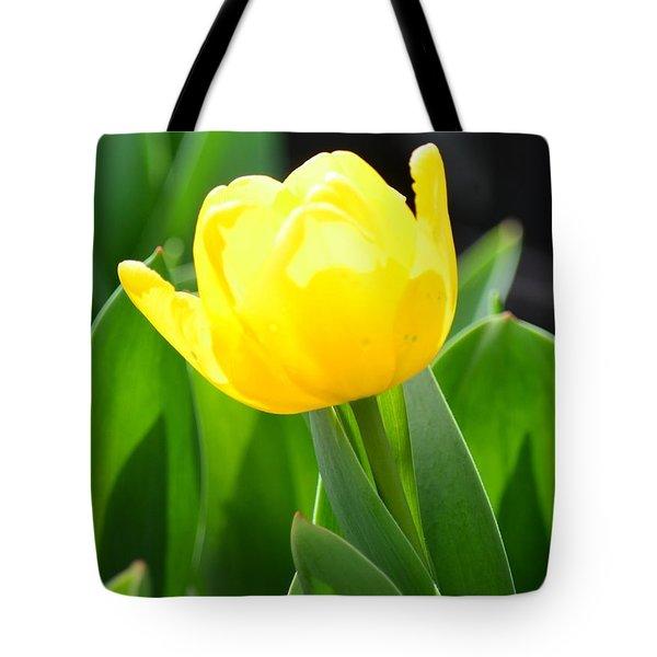 Sunny Yellow Tulip Tote Bag by Maria Urso