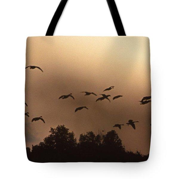 SUNRISE FOG AND INCOMING Tote Bag by Skip Willits