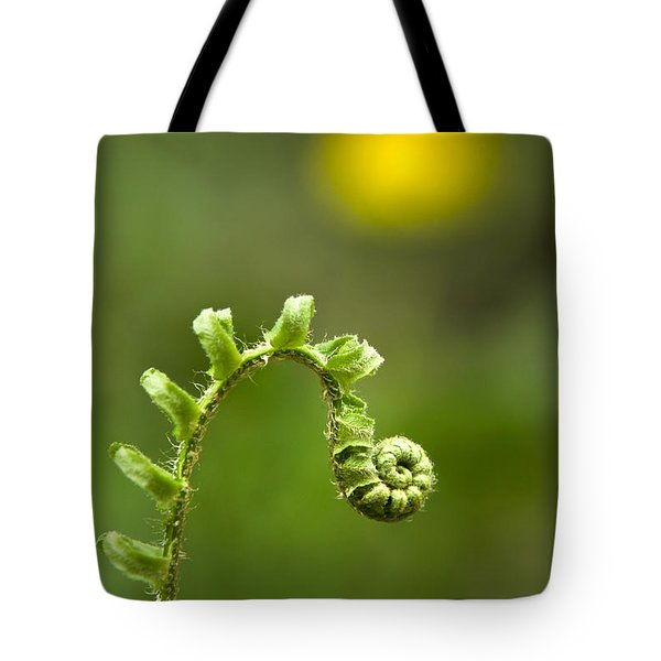 Sunrise Spiral Fern Tote Bag by Christina Rollo