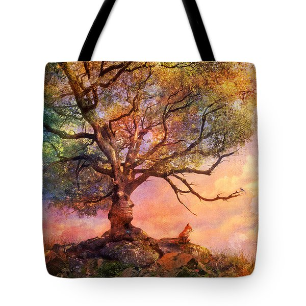 Sunset At Fox Mountain Tote Bag by Aimee Stewart