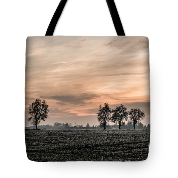 Sunset In The Country - Orange Tote Bag by Hannes Cmarits
