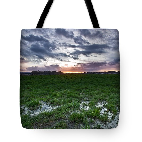 Sunset In The Swamp Tote Bag by Eti Reid