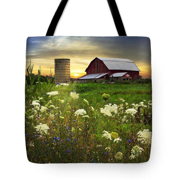 Sunset Lace Pastures Tote Bag by Debra and Dave Vanderlaan