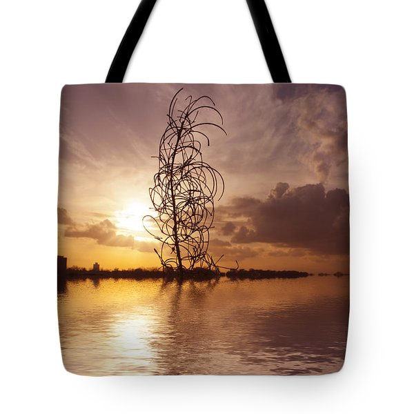 Sunset Over The Lake Tote Bag by David French