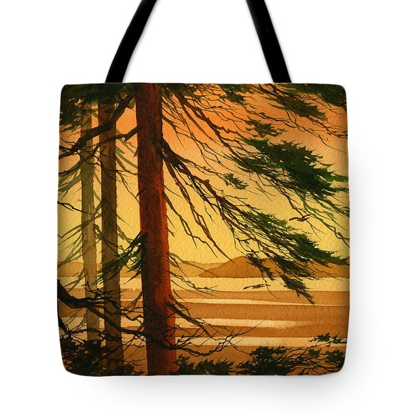 Sunset Splendor Tote Bag by James Williamson