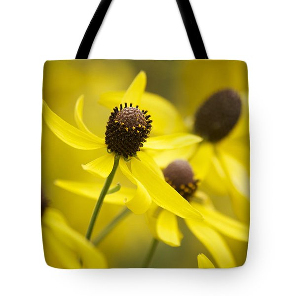 Sunshine On A Cloudy Day Tote Bag by Penny Meyers