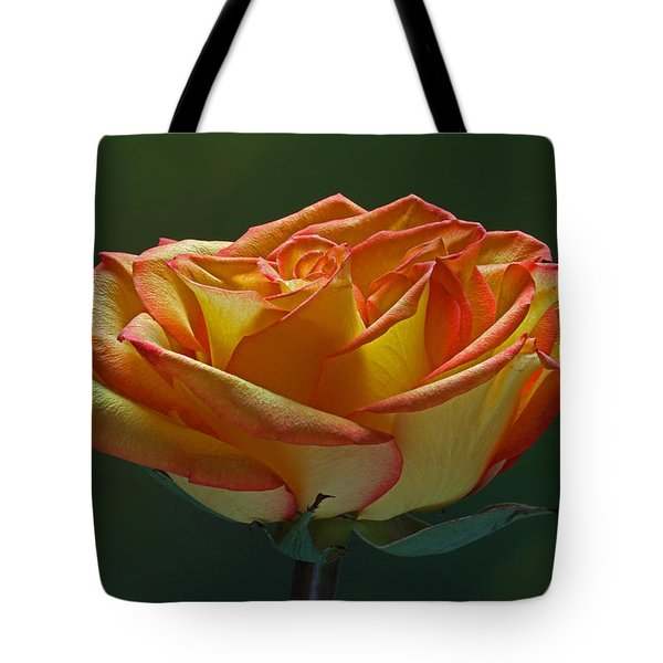 Sunshine On My Shoulders Tote Bag by Juergen Roth