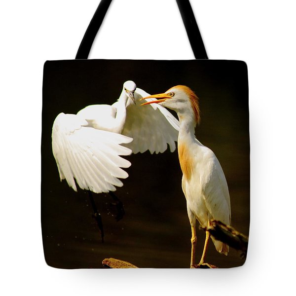 Suprised Cattle Egret Tote Bag by Robert Frederick