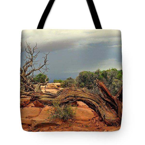 Survivor Tote Bag by Marty Koch