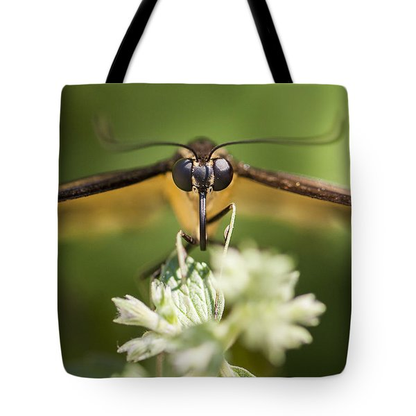 Swallowtail Butterfly Tote Bag by Adam Romanowicz