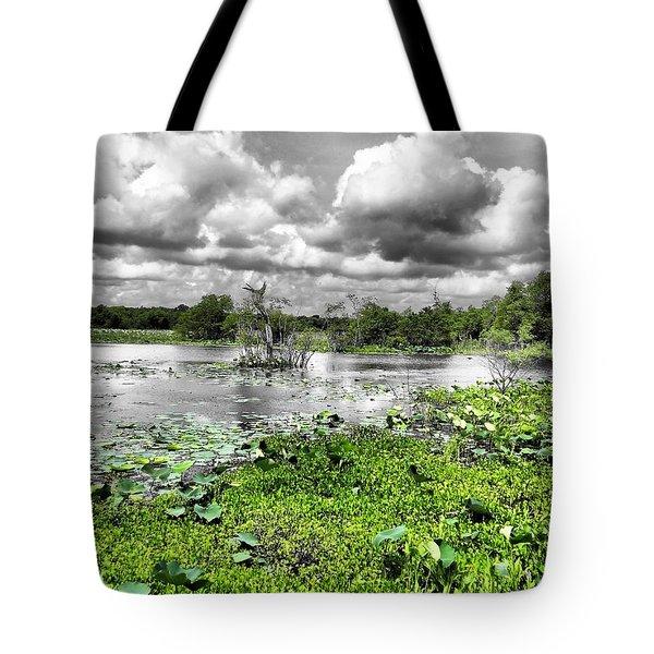 Swamp Tote Bag by Dan Sproul